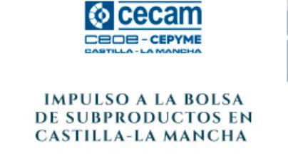Impulso a la Bolsa de Subproductos en Castilla-La Mancha. Diagnóstico de situación y detección de necesidades