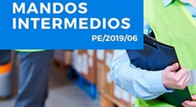 Necesidades formativas de mandos intermedios de las empresas y pymes en C-LM